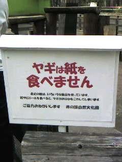 井の頭公園 〜其の六〜