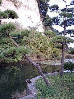 三溪園 〜其の弐〜
