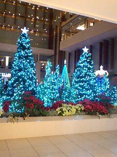 クリスマス・イルミネーション(キュービックプラザ)