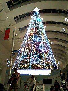 クリスマス・イルミネーション(クイーンズスクエア)