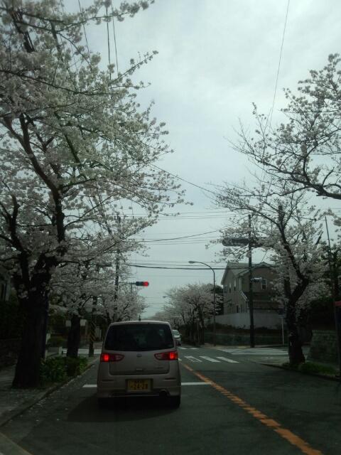 鎌倉へ行く道
